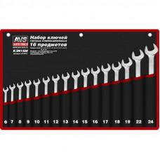 Набор ключей гаечных комбинированных в сумке (6-24 мм) (16 предметов) AVS K3N16M