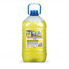 Универсальное моющее средство эконом (нейтральное) 5 кг Clean&Green CG8017