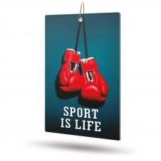 Ароматизатор AVS APS-009 Sport is Life (аром. Fire Ice/Огненный лёд) (бумажные)